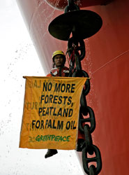 Adon on the chain © Greenpeace/Novis
