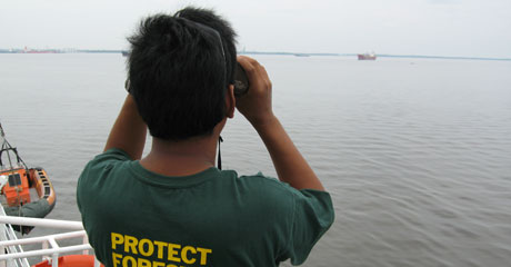 Surveying the ships anchored in Dumai port © Greenpeace/Woolley